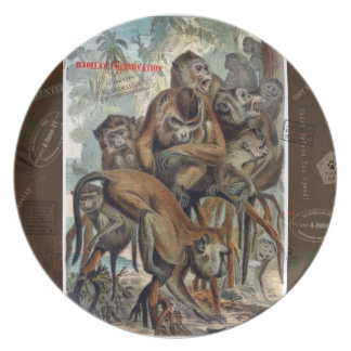 Macaque Responsible Travel Art Dinner Plate