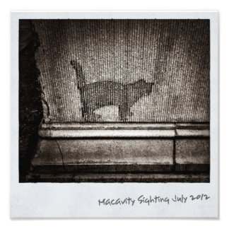 Macavity's Not There Photo Print