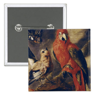 Macaw and Bullfinch 15 Cm Square Badge
