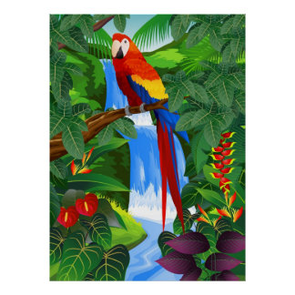 Macaw bird illustration poster