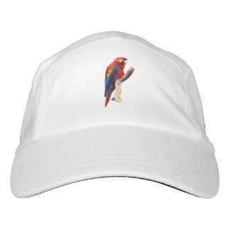 Macaw Hat