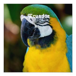 Macaw 13 Cm X 13 Cm Square Invitation Card