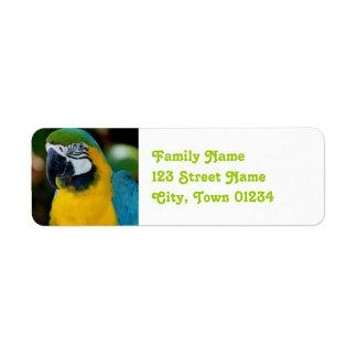 Macaw Return Address Label