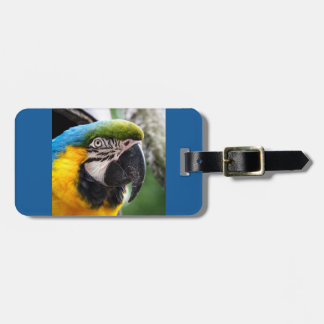 Macaw Luggage Tag