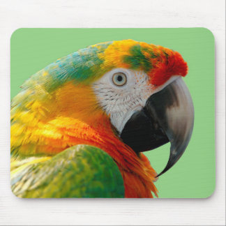 Macaw Mouse Pad