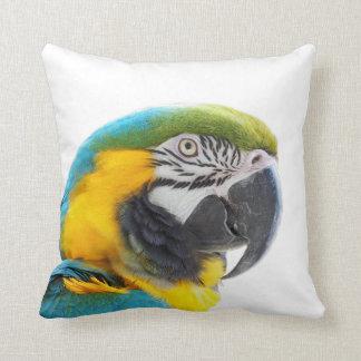 Macaw parrot bird animal exotic tropical photo throw pillow