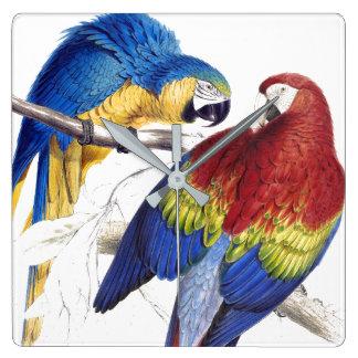 Macaw Parrot Birds Wildlife Animals Wall Clock