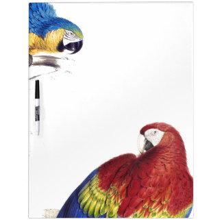 Macaw Parrot Birds Wildlife Dry Erase Board