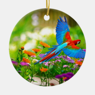 Macaw Parrot Ceramic Ornament