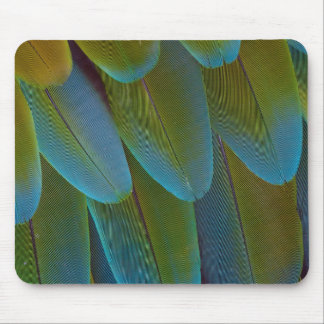 Macaw parrot feather pattern detail mouse pad