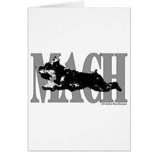 MACH Schnauzer Card
