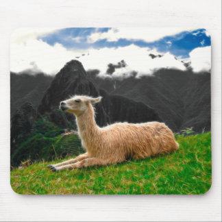 Machu Picchu Llama - Mousepad