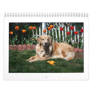 Mack and Friends 2011 Wall Calendars
