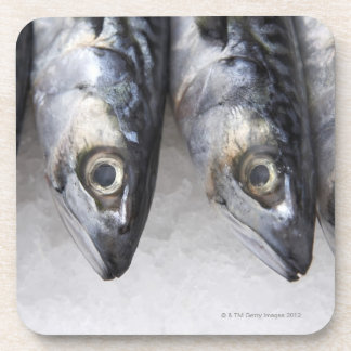Mackerel fish, fresh catch of the day beverage coasters