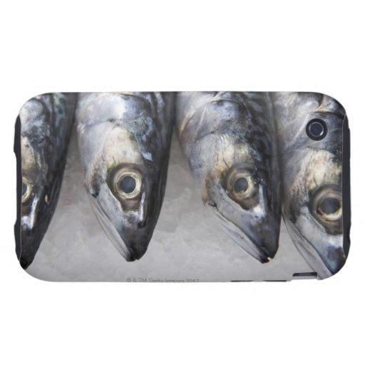 Mackerel fish, fresh catch of the day tough iPhone 3 case