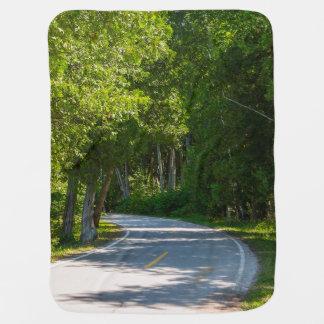 Mackinac Lake Shore Drive Baby Blanket