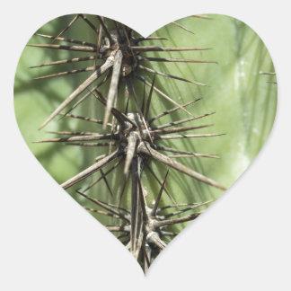 macro close up of cactus thorns heart sticker