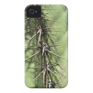 macro close up of cactus thorns iPhone 4 cover