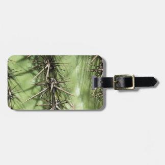 macro close up of cactus thorns luggage tag