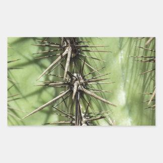 macro close up of cactus thorns rectangular sticker
