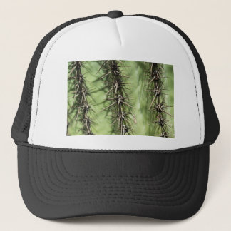 macro close up of cactus thorns trucker hat