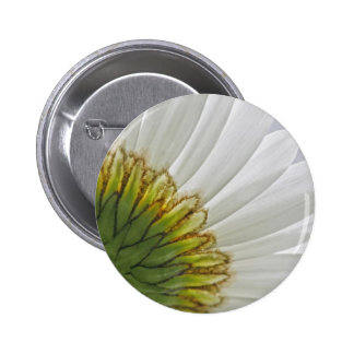 Macro Daisy Photo Pinback Button