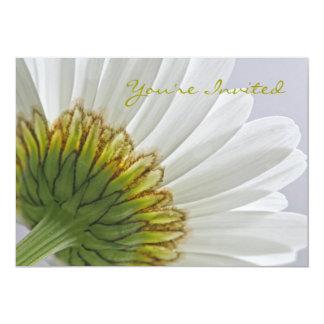 """Macro Daisy Photo 5"""" X 7"""" Invitation Card"""