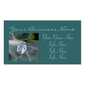 Macro Leaf And Water Drop Business Card Templates