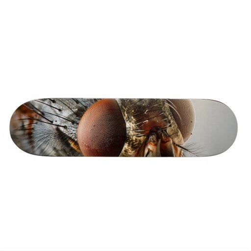 Macro photo of a fly skate board deck
