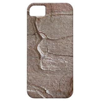 Macro photo of pine bark iPhone 5 cases