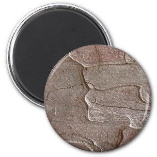 Macro photo of pine bark magnet