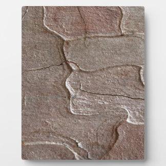 Macro photo of pine bark plaque