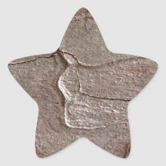 Macro photo of pine bark star sticker