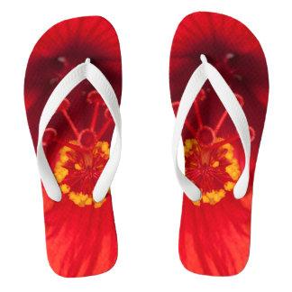 Macro photo of red hibiscus flower on flip flops