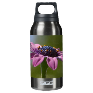 Macro Shot Of A Purple Osteospermum 0.3 Litre Insulated SIGG Thermos Water Bottle