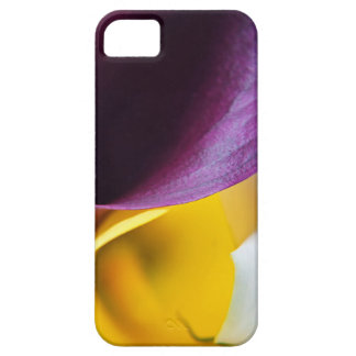 Macro shot of callas iPhone 5 cases