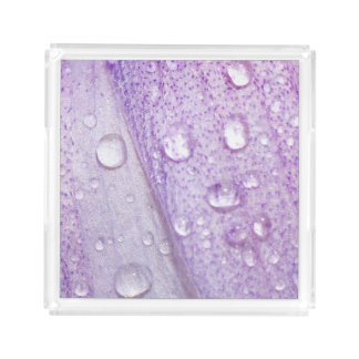 Macro Spring Violet Flower Design Acrylic Tray