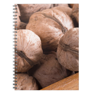 Macro view of a group of walnuts spiral notebook