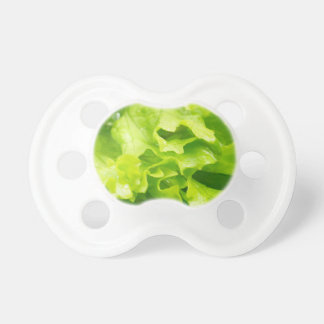 Macro view of the leaves of lettuce in a salad baby pacifiers