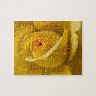 Macro Yellow Rose Jigsaw Puzzle