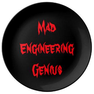Mad Genius Resort Plate Dorm Halloween Nerd Gift Porcelain Plates