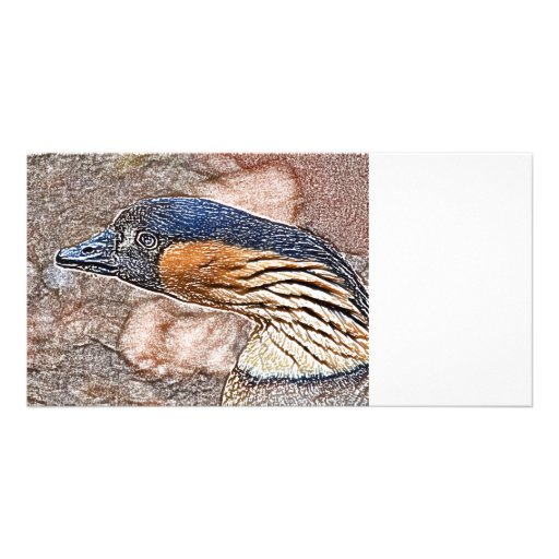 mad goose colored pencil bird personalized photo card