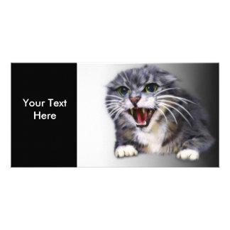 Mad Gray Cat Photo Card