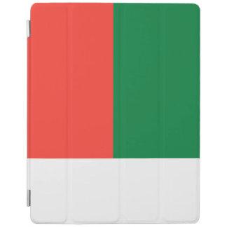 Madagascar Flag iPad Cover