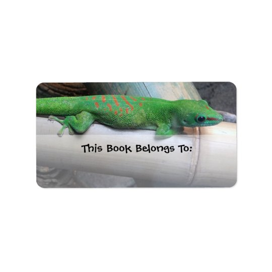 Madagascar Giant Day Gecko Bookplate Labels