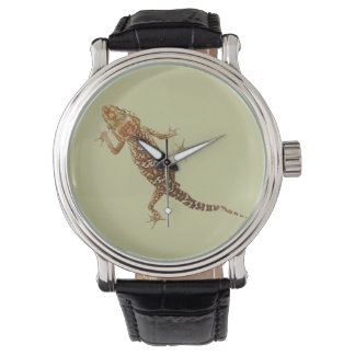 Madagascar ground gecko (Paroedura pictus) on Watches