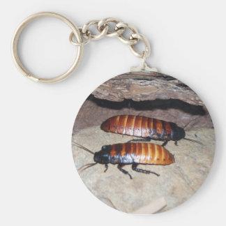 Madagascar Hissing Cockroach Basic Round Button Key Ring