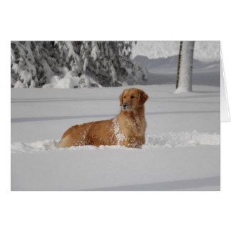 Maddi's snow card