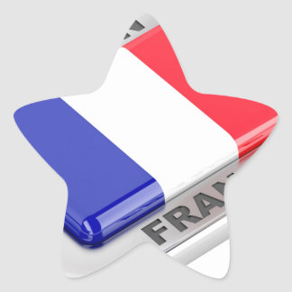 Made in France Star Sticker