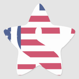 Made In The USA Star Sticker
